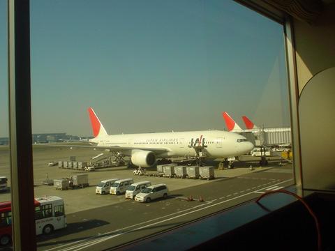 出発を待つJAL313便 JA8981