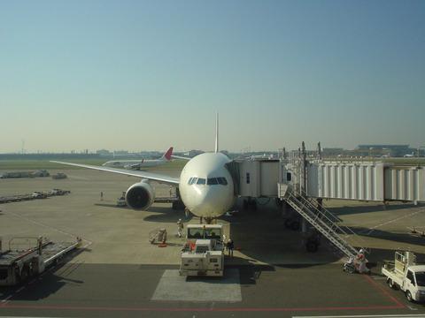 搭乗を待つJAL313便 JA8981
