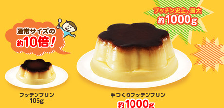 http://shop.glico.co.jp/products/make_pudding.htmlから引用