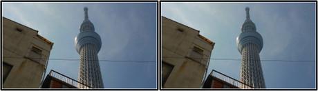 古い建物と一緒にカシャ(3D クリックで拡大画像)