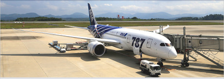https://www.ana.co.jp/share/boeing787info/から引用