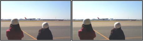 RWY34Lに着陸するJAL機を見るブロガーさん達(平行法用立体画像)