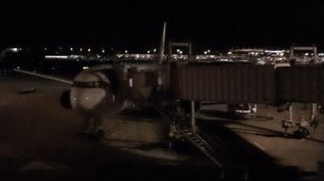 出発を待つJAL139便(JA8397)