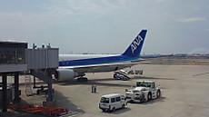 出発を待つANA22便(JA806A)の機尾