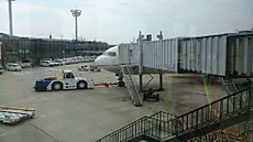 出発を待つANA22便(JA806A)の機首