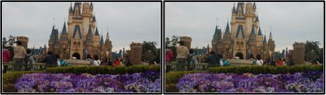 きれいな花に囲まれたシンデレラ城(平行法用立体画像)
