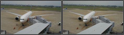 出発を待つANA便 スターアライアンス塗装機(平行法立体視用)